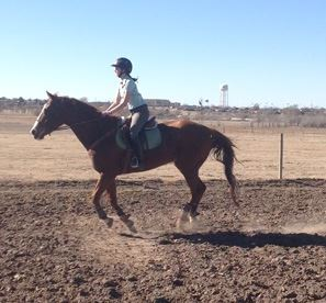 To receive college credit for riding on my university's equestrian team, I have continued taking riding lessons throughout my internship. Cailin Caldwell photo.
