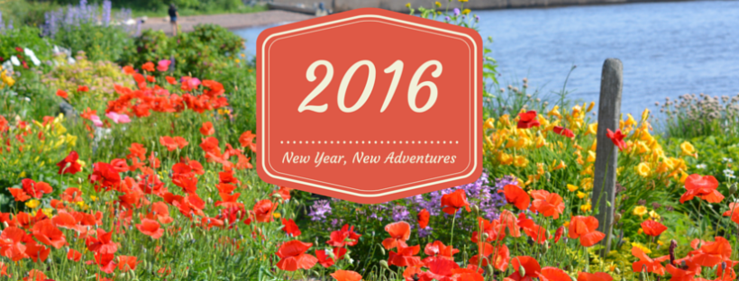 2016: New Year, New Adventures – Annise\'s Anecdotes