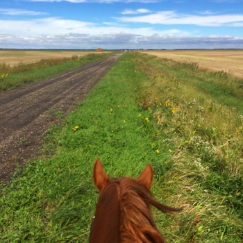 An afternoon ride with my horse Cyclone Larry after class